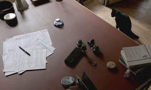 Les ecrivains le silence et les chats